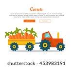 carrot farm conceptual banner....
