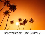 palm trees silhouettes on... | Shutterstock . vector #454038919