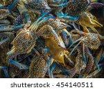 Fresh Flower Crab  Blue Swimme...