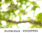 bokeh of tree in the garden ... | Shutterstock . vector #454209904