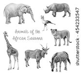 animals of the african savanah  ... | Shutterstock . vector #454233547