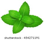 mint. vector illustration. | Shutterstock .eps vector #454271191