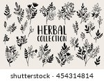 herbs and twigs set for your... | Shutterstock .eps vector #454314814