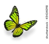 Stock photo green color enhanced butterfly isolated on white soft shadow underneath 45434098