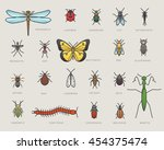 bugs icons | Shutterstock .eps vector #454375474