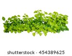 heart shaped green yellow... | Shutterstock . vector #454389625
