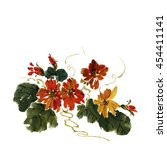 nasturtium flower isolated on... | Shutterstock . vector #454411141