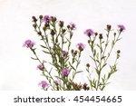 Purple Thistle Flowers And Bud...