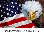 Angry North American Bald Eagle ...