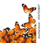Stock photo butterflies isolated on white wildlife composition with copy space 454702807