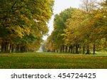 a long tree lined avenue in... | Shutterstock . vector #454724425