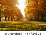 A Long Tree Lined Avenue In...