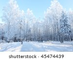 wonderful winter day with... | Shutterstock . vector #45474439