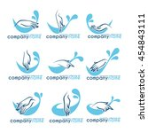 vector collection of clean... | Shutterstock .eps vector #454843111