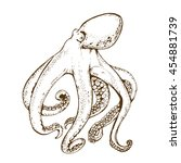 octopus with tentacles vintage...   Shutterstock .eps vector #454881739