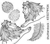 zentangle stylized cartoon lion ... | Shutterstock .eps vector #455079934