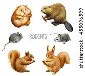 illustration of rodent animals  ... | Shutterstock . vector #455096599