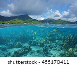 above and below sea surface ... | Shutterstock . vector #455170411