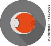 inside view of eye | Shutterstock .eps vector #455214091