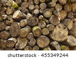 full page of a fire wood log... | Shutterstock . vector #455349244