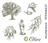 hand drawn sketches of olive... | Shutterstock . vector #455446615