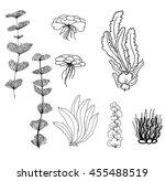 hand drawn vector illustration  ... | Shutterstock .eps vector #455488519