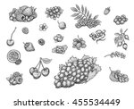 berries collection  strawberry  ... | Shutterstock . vector #455534449