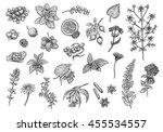 tea collection  fruits  herbs... | Shutterstock . vector #455534557