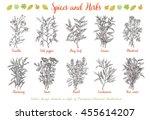 decorative vector vintage...   Shutterstock .eps vector #455614207