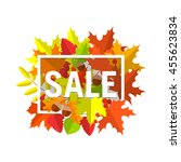 seasonal autumn sales... | Shutterstock .eps vector #455623834