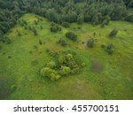 Aerial Forest View At Summer...