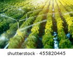 irrigation system in function... | Shutterstock . vector #455820445