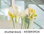 flower decorations | Shutterstock . vector #455893924