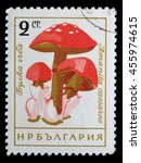 Small photo of ZAGREB, CROATIA - JUNE 25: a stamp printed in Bulgaria shows Caesars mushroom, Amanita caesarea, circa 1961, on June 25, 2014, Zagreb, Croatia