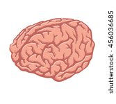human brain. cartoon hand drawn ... | Shutterstock .eps vector #456036685