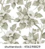 flowers of apple. drawing ... | Shutterstock .eps vector #456198829