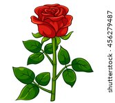 red rose cartoon style  vector... | Shutterstock .eps vector #456279487