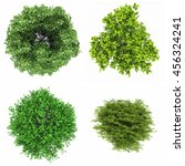 tree isolated white background... | Shutterstock . vector #456324241