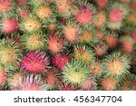 rambutan sweet delicious fruit... | Shutterstock . vector #456347704