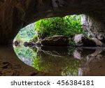 Mouth Of Cave With Green Tree...