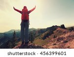 cheering successful woman... | Shutterstock . vector #456399601