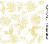 lemons  and flowers. vector...   Shutterstock .eps vector #456430849