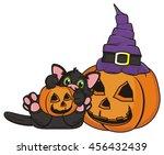 kitten lying on his back next... | Shutterstock . vector #456432439