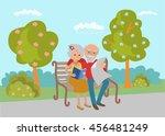 elderly couple sitting on the... | Shutterstock .eps vector #456481249