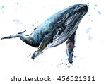 Humpback Whale Watercolor...