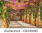 beautiful flowers among the... | Shutterstock . vector #456540085
