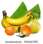 photo realistic vector. fresh... | Shutterstock .eps vector #45656785