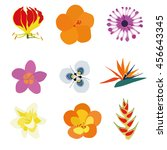 Set Of Nine Exotic Flowers...