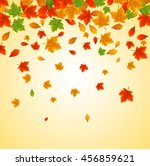 background with maple autumn... | Shutterstock .eps vector #456859621