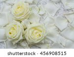 all of rose  stem  rose flowers'... | Shutterstock . vector #456908515